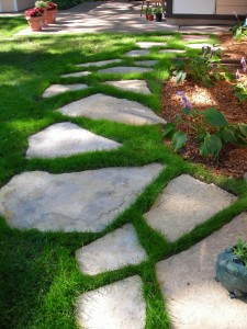 Natural stone steppers